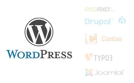 CMS-Auswahl-WordPress